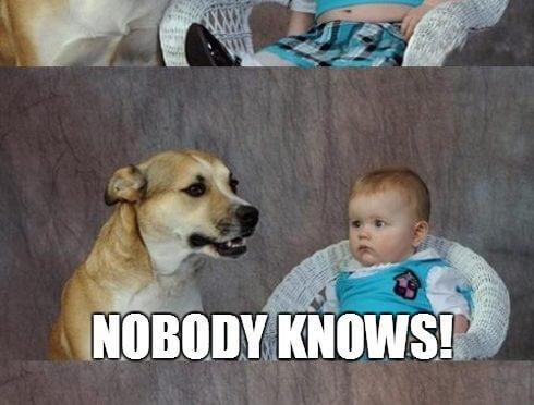 Dad Joke Dog